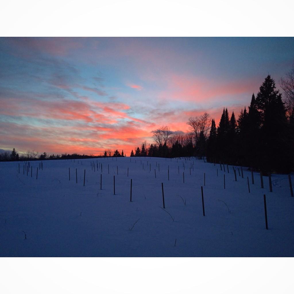 Beautiful sunset captured while snowshoeing near Lake Rosseau